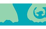 | Terapias y tratamientos sobre ostomías y úlceras